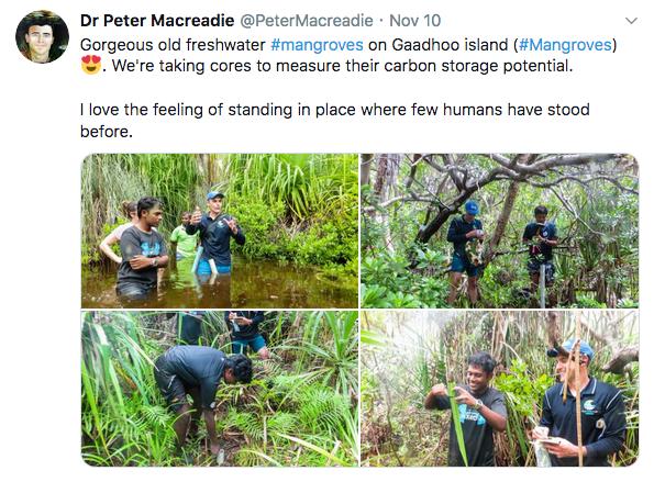 Maldives_Macreadie_tweets7