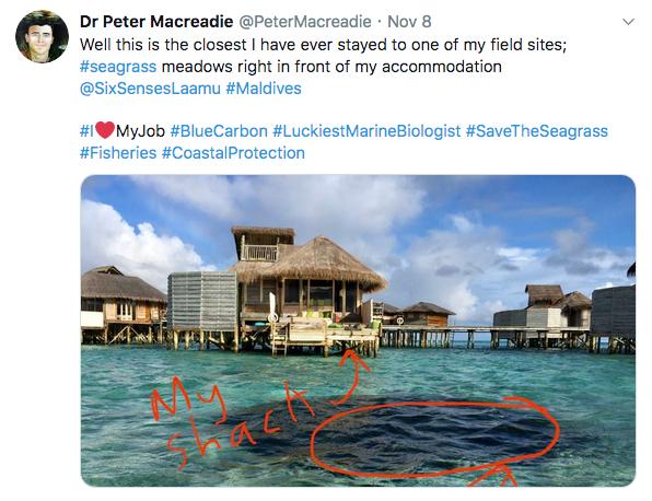 Maldives_Macreadie_tweets9